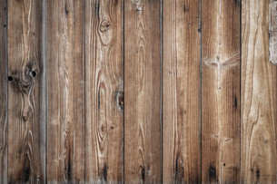 Light woodの写真素材 [FYI00649862]