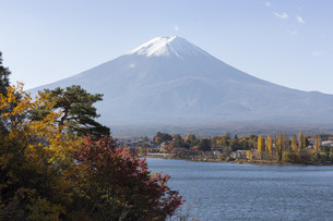 Mt.Fuji in autumn, Japanの写真素材 [FYI00650104]
