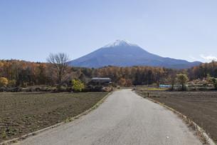 Mt.Fuji in autumn, Japanの写真素材 [FYI00650105]