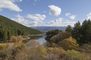Mt.Fuji in autumn, Japanの写真素材 [FYI00650131]