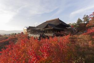 Kiyomizu Temple in Kyoto, Japanの写真素材 [FYI00650134]