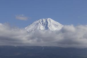 Mt.Fuji in autumn, Japanの写真素材 [FYI00650135]