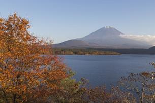 Mt.Fuji in autumn, Japanの写真素材 [FYI00650147]