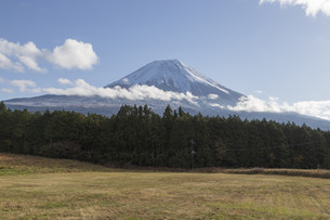Mt.Fuji in autumn, Japanの写真素材 [FYI00650149]