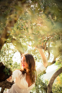 Attractive, young brunette on the beach, amid olive trees, looking both sensual and naturalの写真素材 [FYI00650251]