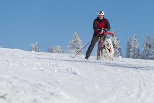 winter_sportsの素材 [FYI00650624]