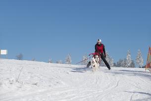 winter_sportsの素材 [FYI00650626]