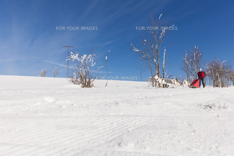 winter_sportsの素材 [FYI00650631]