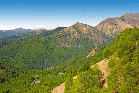val grande national park in italyの写真素材 [FYI00650636]