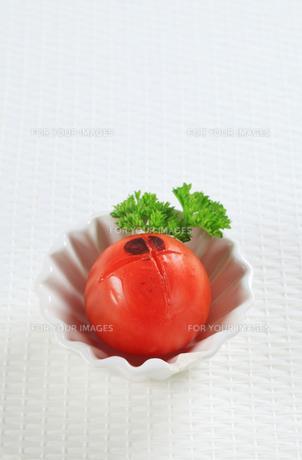 Lightly grilled tomatoの素材 [FYI00650708]