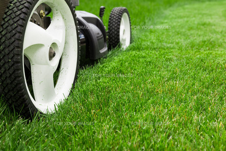 Lawn mowerの写真素材 [FYI00651059]