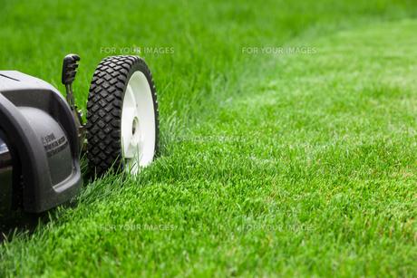 Lawn mowerの写真素材 [FYI00651063]