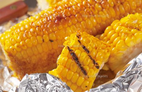 Grilled cornの写真素材 [FYI00651376]
