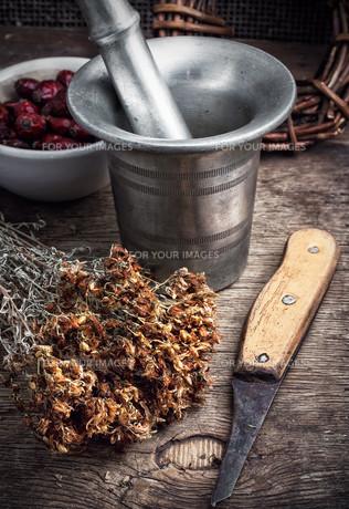 ancient healing recipe of herbsの写真素材 [FYI00651556]