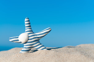 wanderlust,on the beach,beach holiday,starfish fabricの写真素材 [FYI00651603]