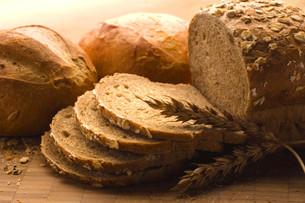 Oven-fresh loaf.の写真素材 [FYI00651898]
