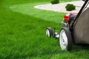 Lawn mower on green lawnの写真素材 [FYI00652385]