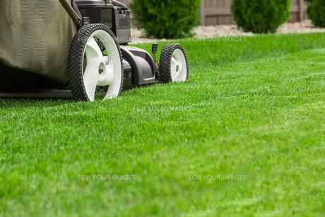 Lawn mower on green lawnの写真素材 [FYI00652386]