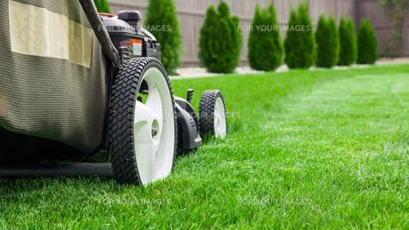 Lawn mower on green lawnの写真素材 [FYI00652387]