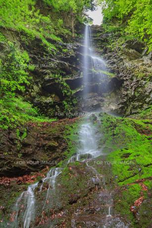 Valea lui Stan Gorge in Romaniaの写真素材 [FYI00652485]