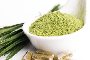 Young barley grass. Detox superfood.の写真素材 [FYI00652492]