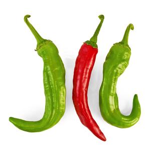 Three hot peppersの写真素材 [FYI00652699]