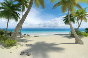 Empty tropical beachの写真素材 [FYI00652824]
