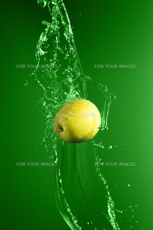 Green apple with water splash, on greenの写真素材 [FYI00653622]