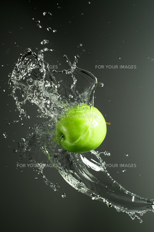 Green apple with water splash, on blackの素材 [FYI00653625]