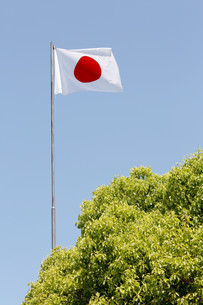 Japanese flag in wind against clear blue skyの写真素材 [FYI00653699]