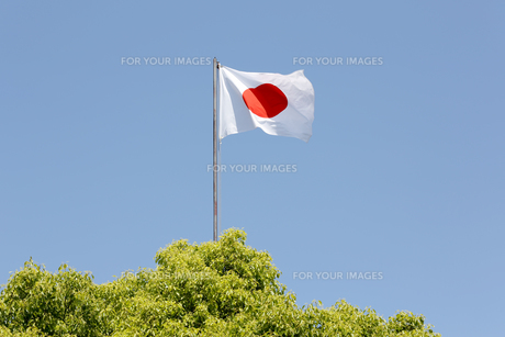 Japanese flag in wind against clear blue skyの写真素材 [FYI00653702]