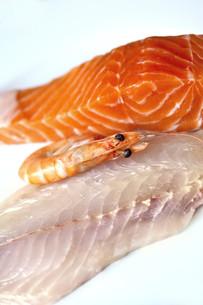 Fishの写真素材 [FYI00654353]