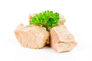 tunaの素材 [FYI00654412]