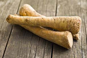 fresh horseradish rootの写真素材 [FYI00654524]