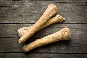 fresh horseradish rootの写真素材 [FYI00654529]