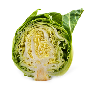 cabbage isolated on white backgroundの写真素材 [FYI00654747]