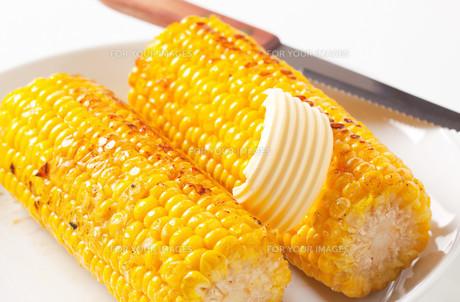 Roasted corn on the cobの写真素材 [FYI00654749]