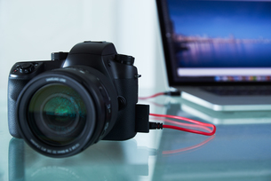 DSLR Photo Camera Tethered To Laptop Computer With USB Cableの写真素材 [FYI00654817]