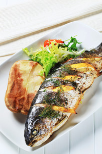 Lemon dill trout with baked potatoの写真素材 [FYI00656544]