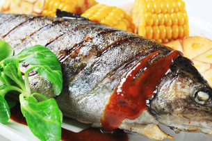Grilled troutの写真素材 [FYI00656576]