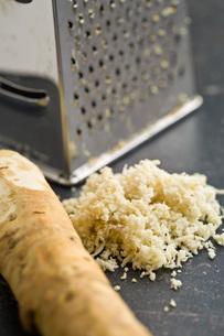grated horseradish rootの写真素材 [FYI00656638]