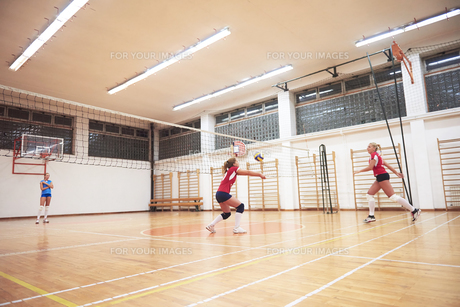 volleyball  woman groupの写真素材 [FYI00656831]