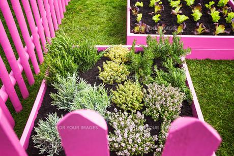parkways_gardensの写真素材 [FYI00656962]