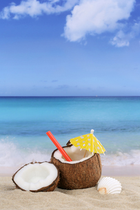 coconut fruit in the summer by the sea and beachの写真素材 [FYI00657858]