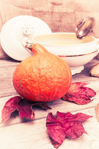 pumpkin soup set vintageの写真素材 [FYI00657914]