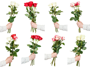 set of three and five rose flower bouquets in handの写真素材 [FYI00658245]