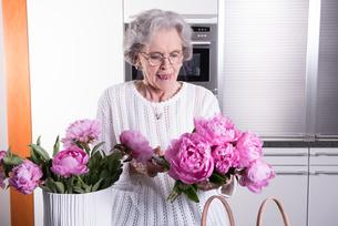 active senior presents flowers in the vaseの写真素材 [FYI00658283]