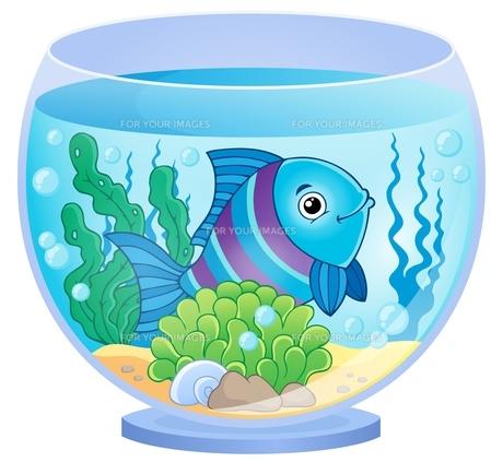Aquarium theme image 8の写真素材 [FYI00658458]