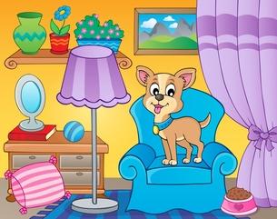 Room with dog on armchairの素材 [FYI00658503]