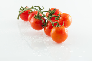 Tomatoes on white backgroundの写真素材 [FYI00658668]